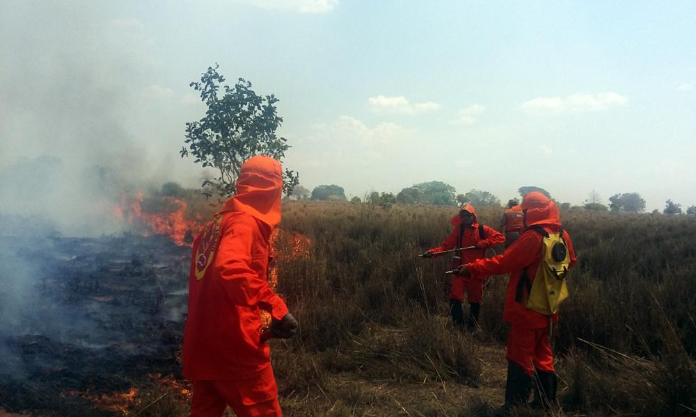 Cerca de 2,5 mil hectares de vegetação do cerrado e pastagens foram queimados