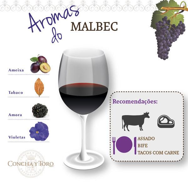 Malbec-port concha y toro vinho