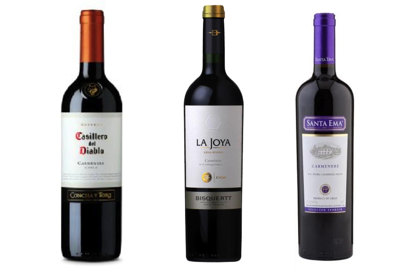Carmenere - Vinho frutado e com baixo teor de álcool