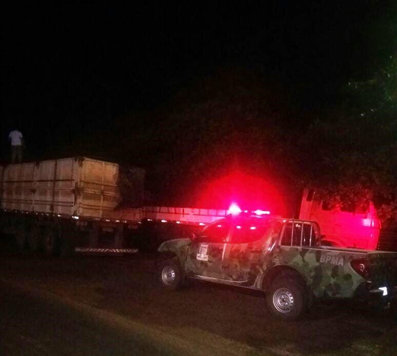 PM apreende madeira ilegal em Palmeirasjpg (1)