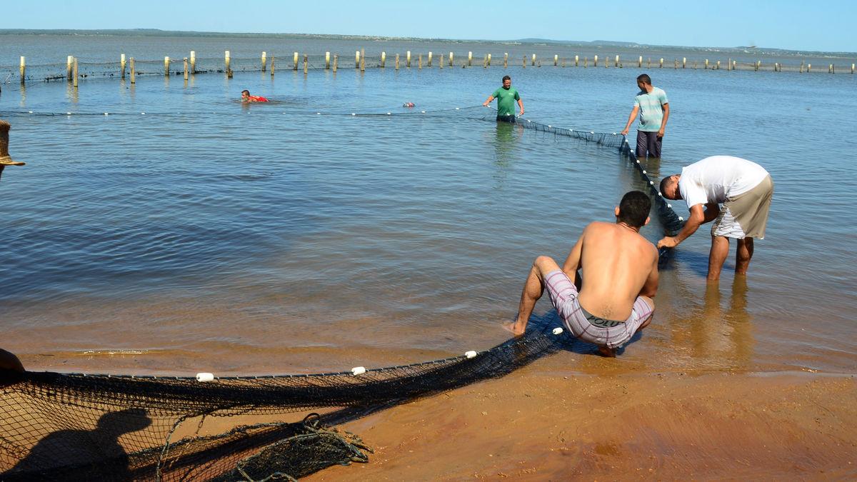 Verificaçao Rede de Proteçao Praia do Prata. R.R. 23.02 (88)