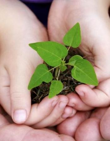 03052017_sustentabilidade_ag.alagoas