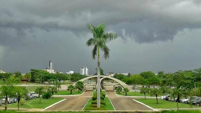 Chuva-Fraca-Palmas