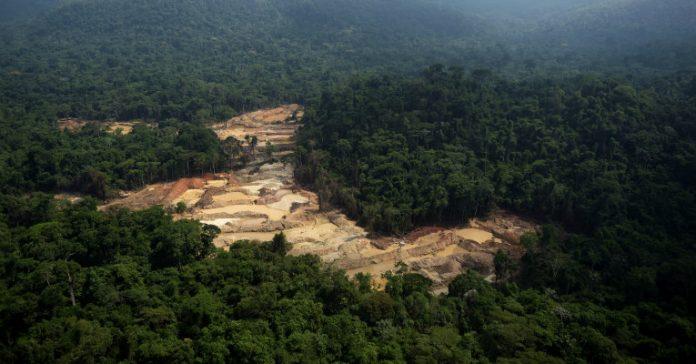 Resultado de imagem para Desmatamento na amazonia 2018