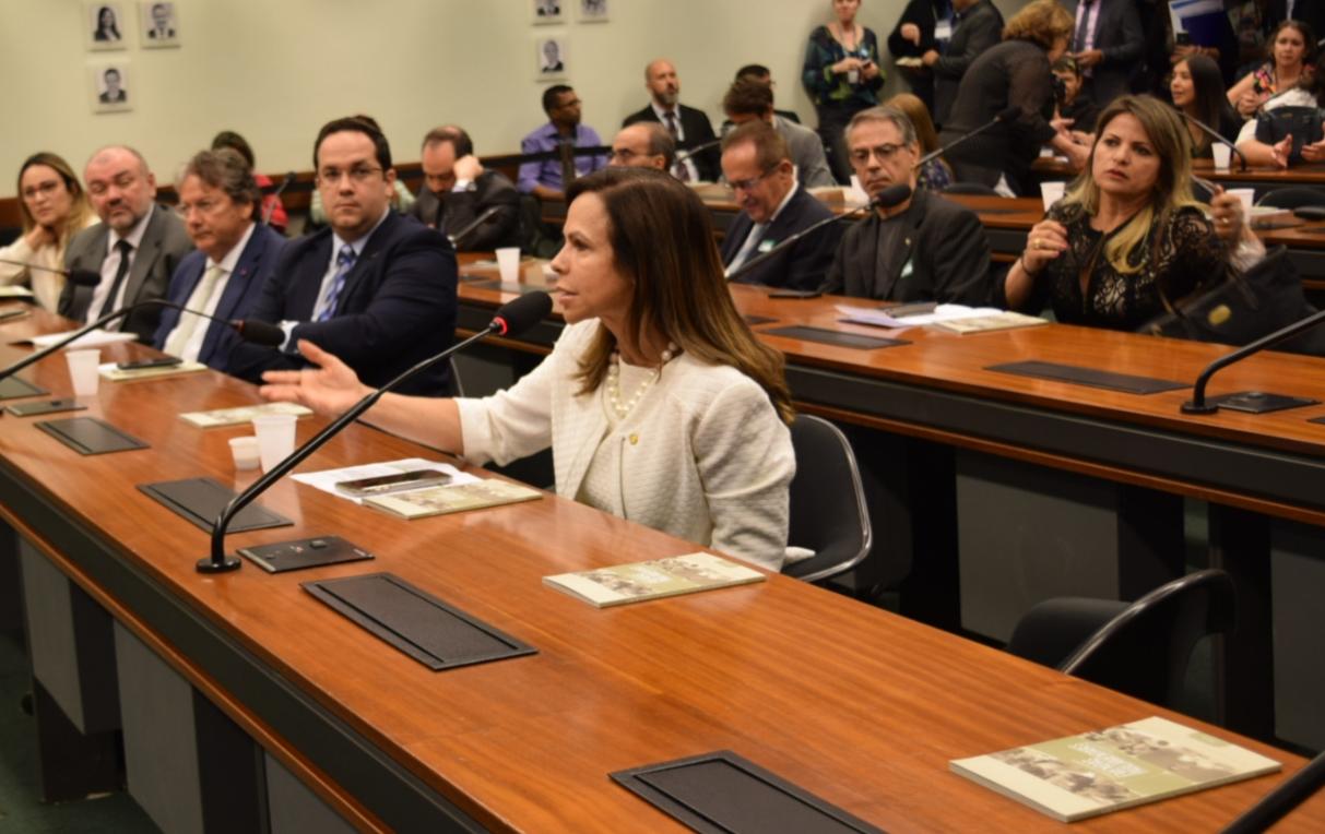 No retorno à Brasília, Dorinha discute emendas de 2019 com o Ministro da Educação e Cultura