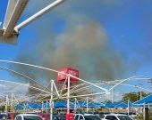 Incêndio atinge área de proteção ambiental do Parque Cesamar