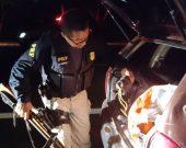 Homem é preso em rodovia portando ilegalmente arma de fogo, munições e animais silvestres mortos