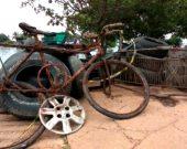 Bicicleta, cadeira e até pneus: cerca de 1 tonelada de lixo é retirada do lago de Palmas